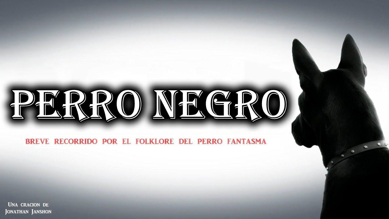 Soñar con un perro negro