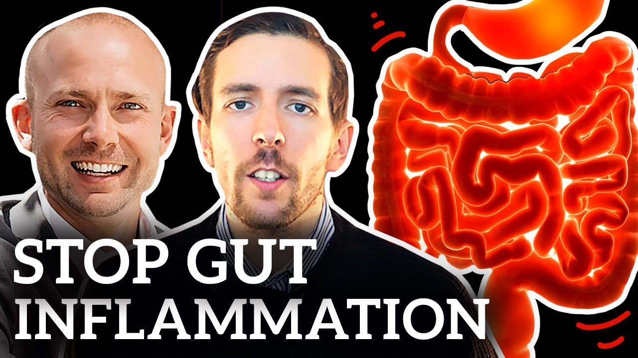 Nutritionist Reviews | Dr Zyrowski | How To Reduce Gut Inflammation