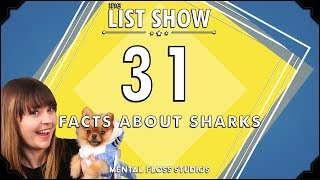 31 Facts About Sharks | Mental Floss List Show | 534