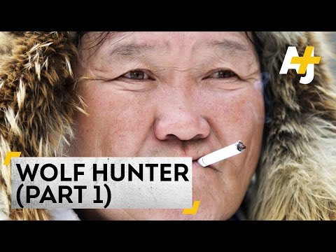 Wolf Hunting In Siberia: Saving The Reindeer (Part 1)