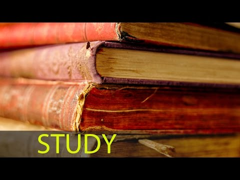 8 Hour Focus Music: Study Music, Brain Power, Alpha Waves Music, Studying Music ☯338