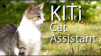 KITi The Virtual Cat Assistant - PARODY