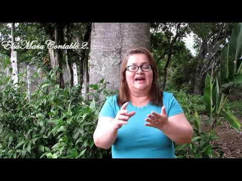 Puntos Importantes Para Buscar Un Empleo: Video 2 de 3