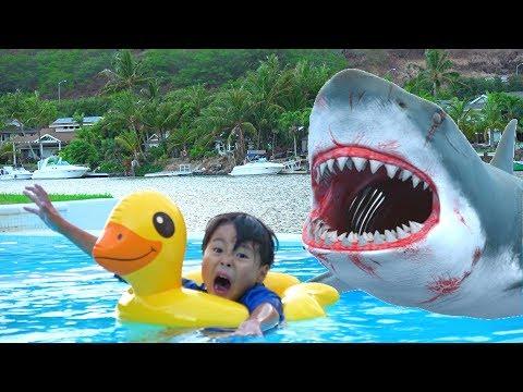 It's a shark! Is this a dream? サメだー!!? パパとママ??? 夢!?? おゆうぎ ママのお手伝い こうくんねみちゃん