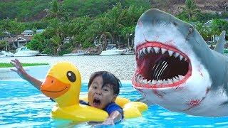 サメだー!!? パパとママ??? 夢!?? おゆうぎ ママのお手伝い こうくんねみちゃん thumbnail