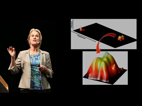 Frances Arnold: Innovation by Evolution: The Expanding Enzyme Universe