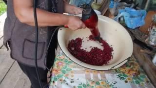 Быстрый способ отвеять ягоду