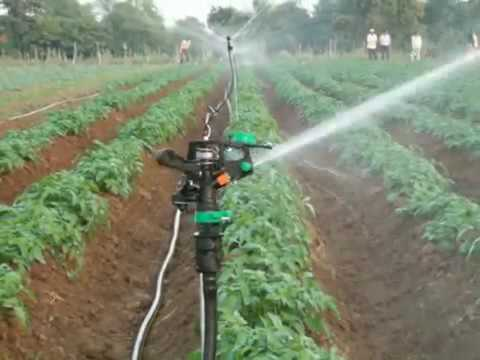 sprinkler system i installed in india for jain irrigation youtube