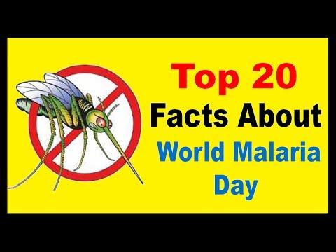 World Malaria Day - Facts