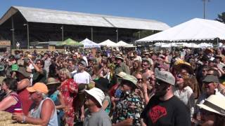 Melbourne Ska Orchestra Sierra Nevada World Music Festival June 21, 2015 whole show