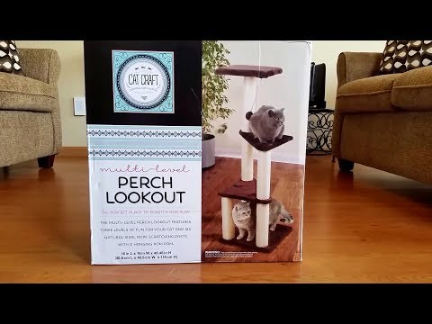 Building a Cat Tree - Perch Lookout (Jericho Helps)