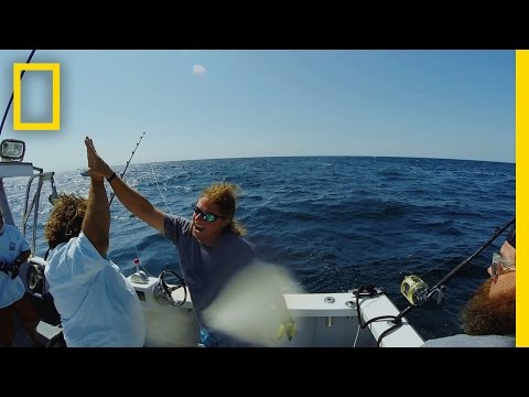 Catch Of The Week - Payback's A Fish | Wicked Tuna