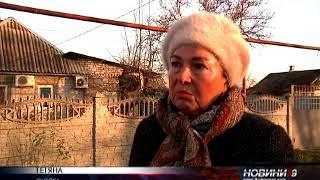 Домашние собаки насмерть растерзали женщину в Подгороднем