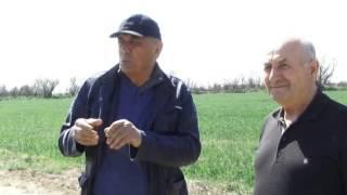 """Выезд работников УСХ в ООО """"Дагагро"""", с. Чагаротар"""