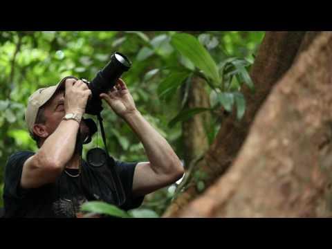 Forum AFdPZ de la Conservation en Guyane  - Novembre 2016