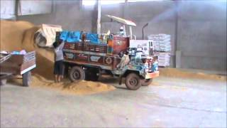 Selling Rice and Buying Fertilizer in Rural Thailand