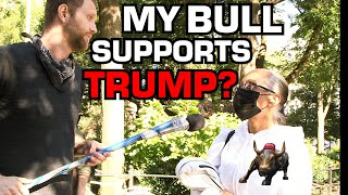 Cuckold's Bull Supports Trump!