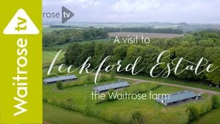 A Tour of Leckford, the Waitrose Farm - Interactive Video - Waitrose