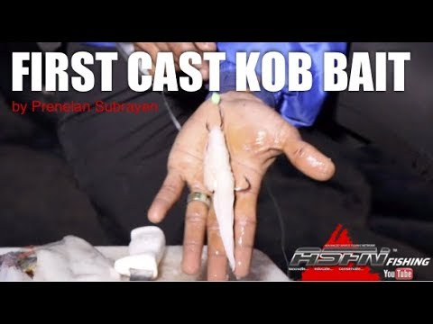 ASFN Fishing Baits -   First Cast Kob Bait