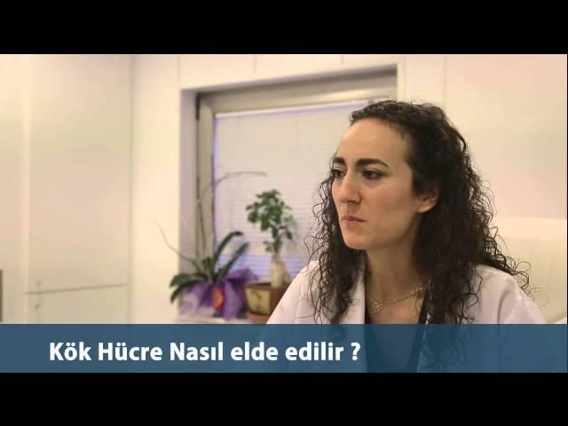 Dr.Öykü Maraşoğlu Çelen - Kök Hücre Nasıl Elde Edilir ?