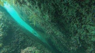 Щель. Горбыли. Подводная охота в Черном море.