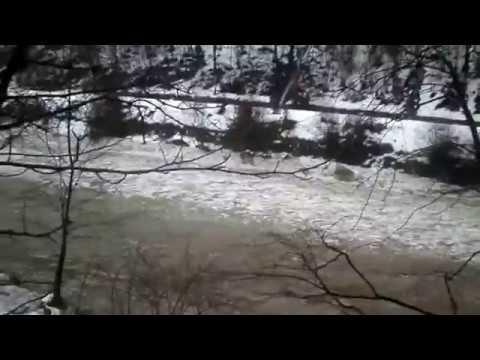 речка тиса реферат