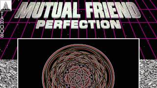 Mutual Friend - Perfection (Liar Optimix)