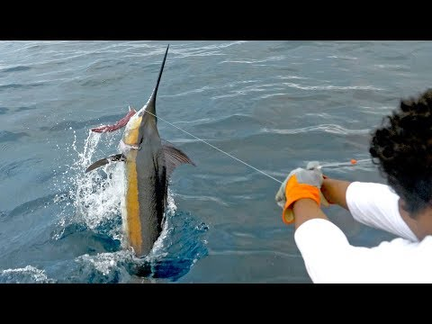 EPIC Blue Marlin Fishing In Costa Rica