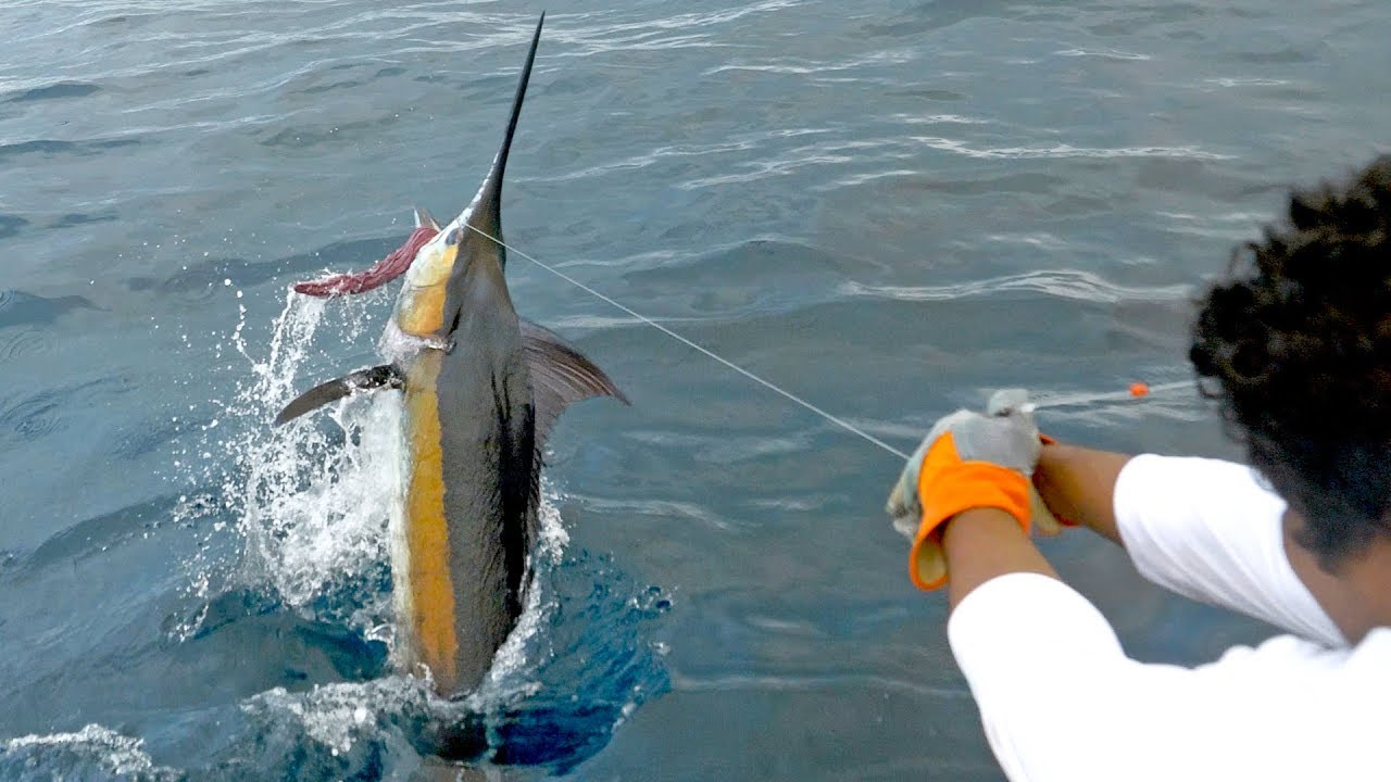 epic-blue-marlin-fishing-in-costa-rica