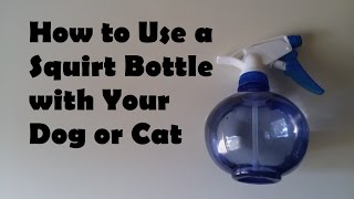 How to Use a Squirt Bottle with Your Dog or Cat