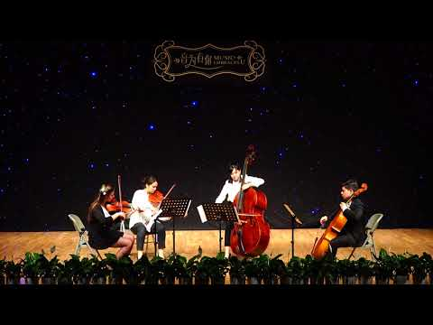 Double Bass Quartet No. 2 1st Movt. Hoffmeister 霍夫迈斯特低音提琴四重奏