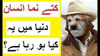 Human Pup Community -- Janwar Bannay Ka Junoon