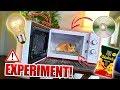 Experiment: Mikrowelle Vs. Glühbirne, Cd, Chips, Uvm  Gadget Fun!