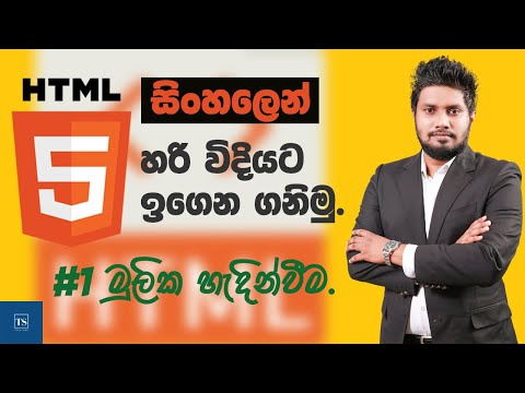 HTML Introduction : HTML in Sinhala - Lesson 01 | Tech Side
