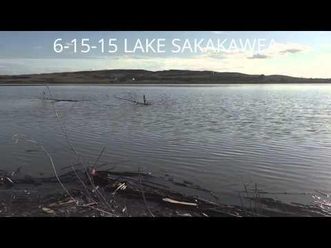 6 15 15 fishing lake sakakawea youtube for Lake sakakawea fishing report