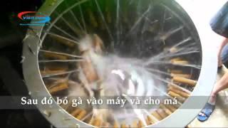 [Máy vặt lông gà vịt] Hồ Chí Minh - 0979.208.345