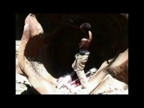 Senses of Time: Video and Film-based Works of Africa