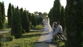 видео Організація весілля в Італії