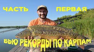 ДВА РАЗА ПОДРЯД ПЕРЕБИЛ СВОЙ BIG FISH Ловля больших карпов на водоёме ВЫСОКОПОЛЬЕ