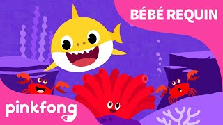 Les Couleurs de la Mer | Chanter avec Bébé Requin | Pinkfong, Bébé Requin ! Chansons pour Enfants