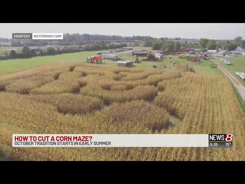 How a corn maze is made