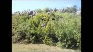 Fshati Gurbardh-Carravran thumbnail