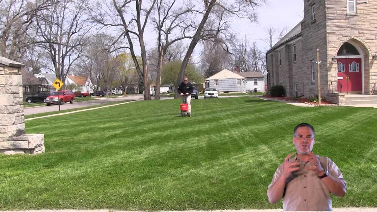 How To Fertilize The Lawn Ly Fertilizer