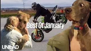 Top 15 Best Of... January | UNILAD Compilations