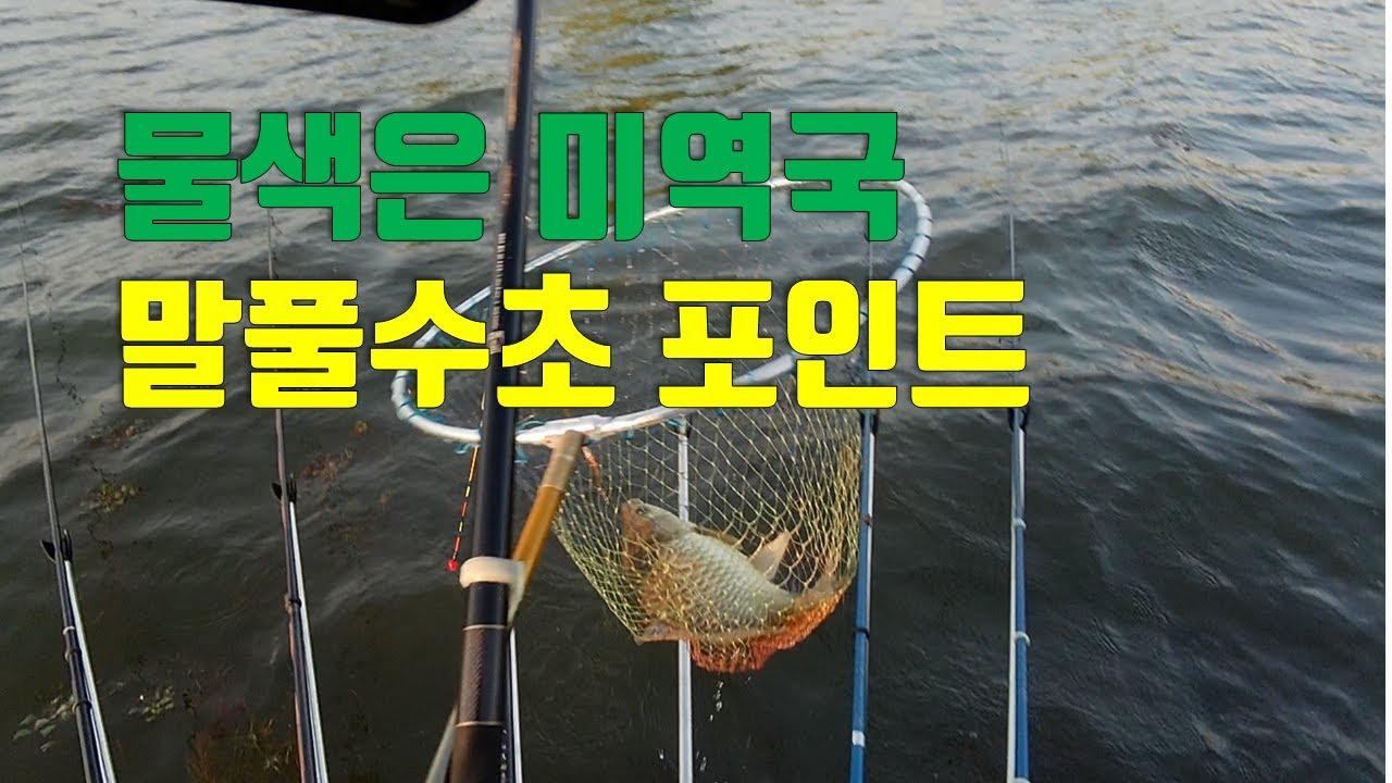 [조감독의 붕어낚시] 배수기 확실한 대안 강낚시