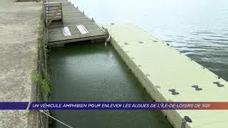 Yvelines | Un véhicule amphibien pour enlever les algues de l'Ile de Loisirs de SQY