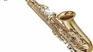 'Sochenge Tumhe Pyaar Kare ke nahi' Saxophone Instrumental