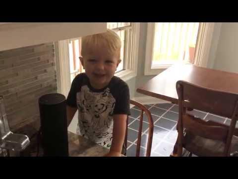 Alexa, play baby shark. - YouTube