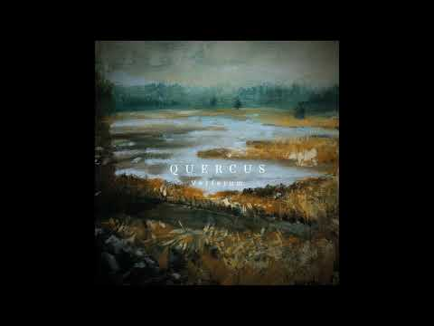 Quercus - Ceremony of the Night (Official Audio)