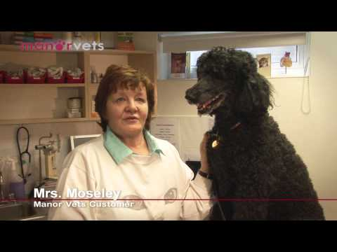 Manor Vets Customer Testimonial